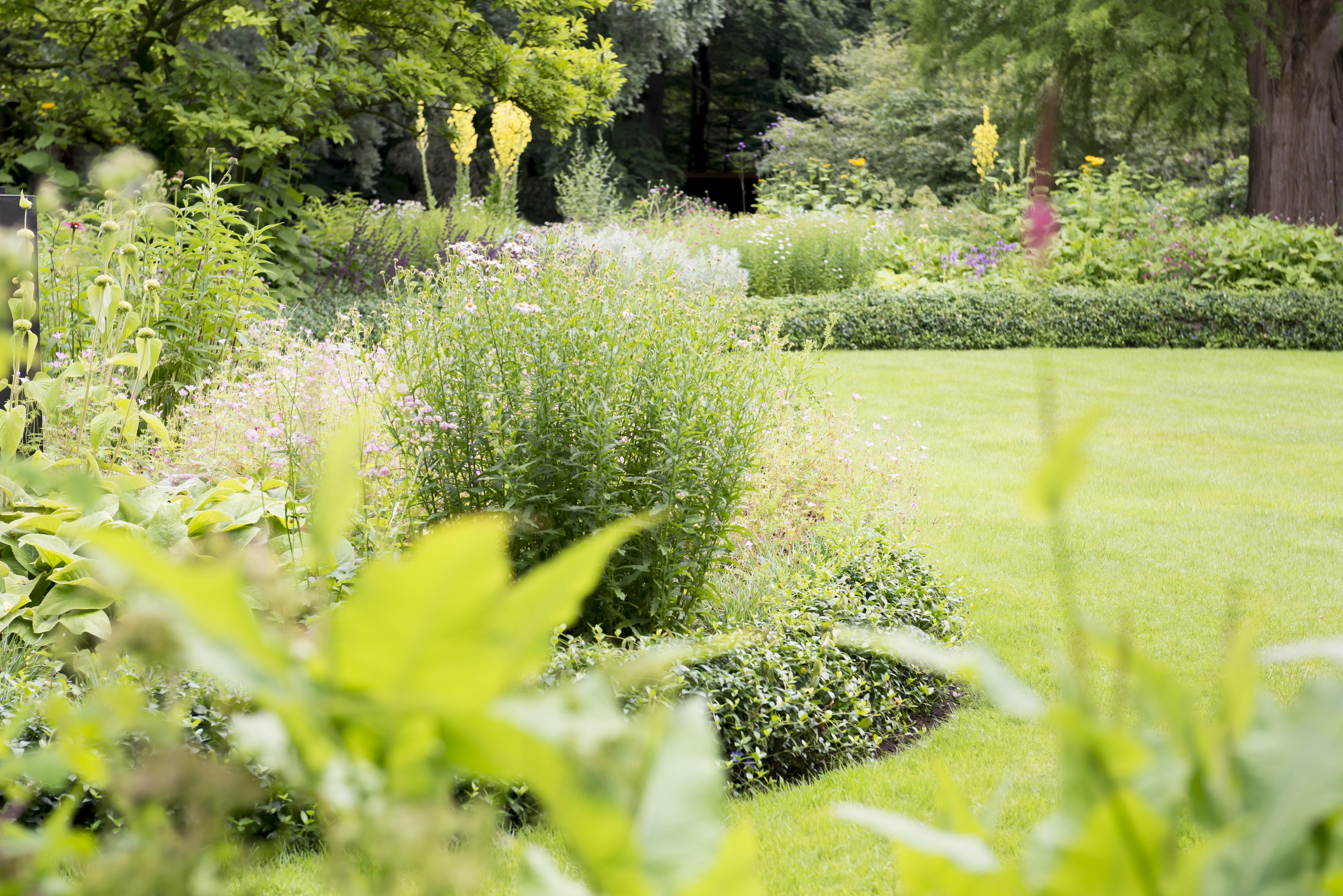 Sproei Installatie Tuin : Tuin water geven hoveniersbedrijf jonnie michelbrink