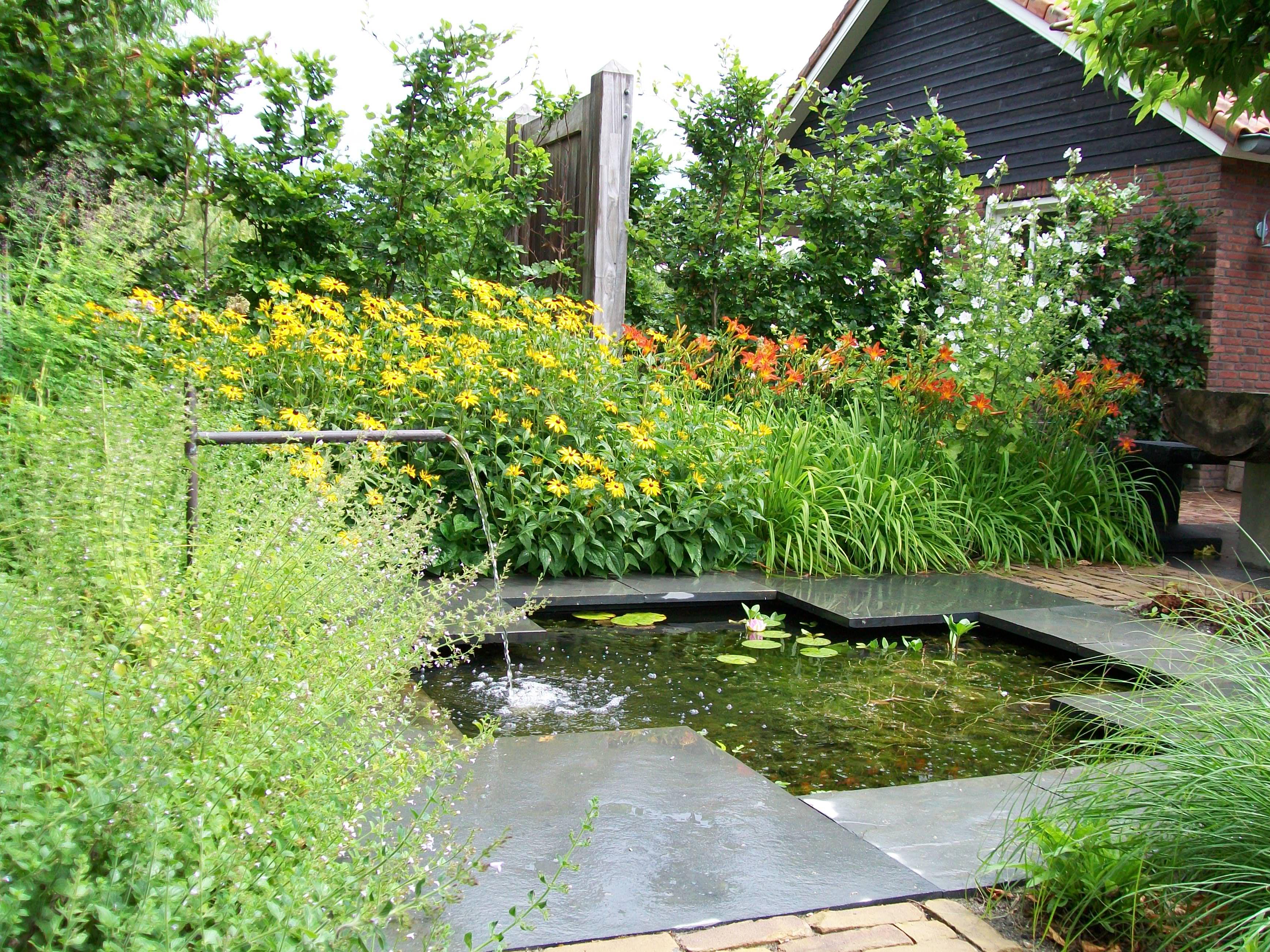 Sproei Installatie Tuin : Werkzaamheden in en rondom uw tuin u rené budding beregeningen